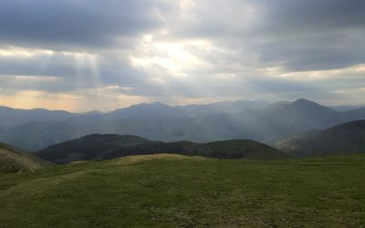 Lessons from the Camino……Surrender