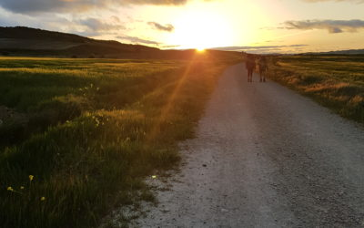 Lessons from the Camino….Trust